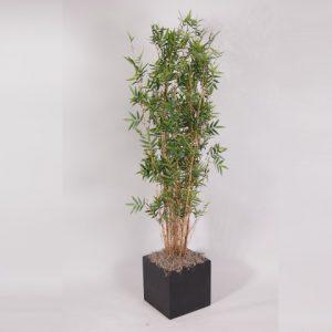 planten kunst +- 1,80   2